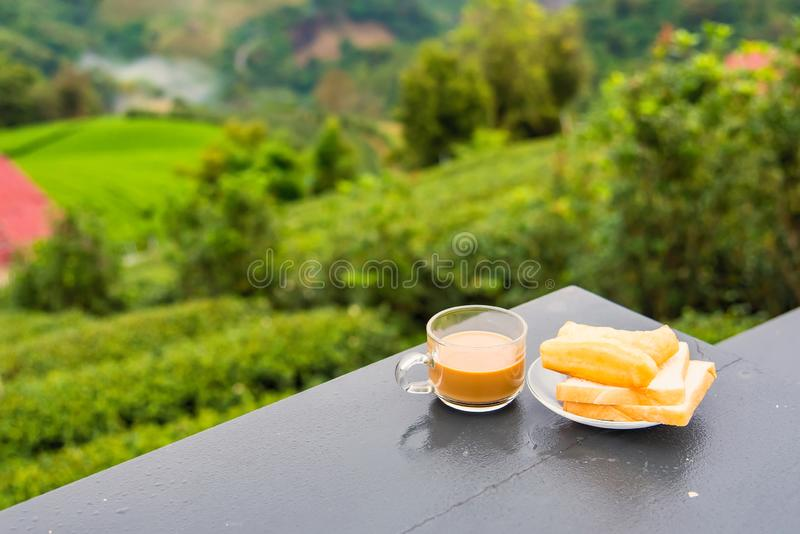 Coffee and deep-fried dough stick on wood table at the tea plantation in morning time.Thailand. Asia asian background bean beverage black bread break breakfast royalty free stock photos
