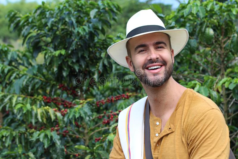 Coffee farmer in the fields stock images