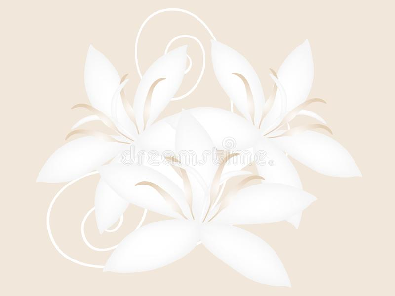 Coffee flowers isolated on a beige background, design. stock illustration