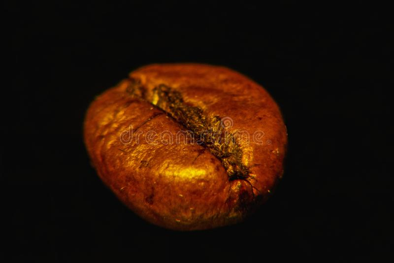Coffee grain on black background magnified, closeup, macro. Coffee bean on black solid background magnified, closeup, macro. Indoors. Artificial light stock images