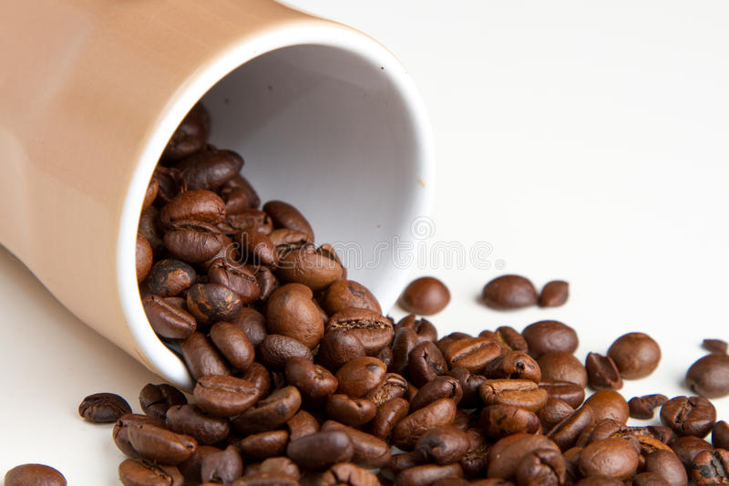 Coffee grain royalty free stock photos