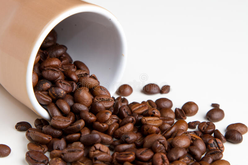 Coffee grain stock images