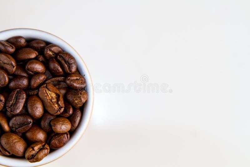 Coffee grain royalty free stock image