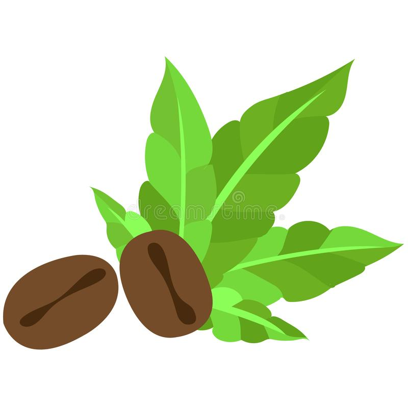Coffee grains and green leaves logo. vector illustration