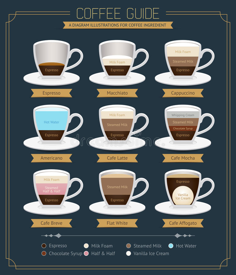 Coffee Guide Diagram. Vector Illustrations stock illustration