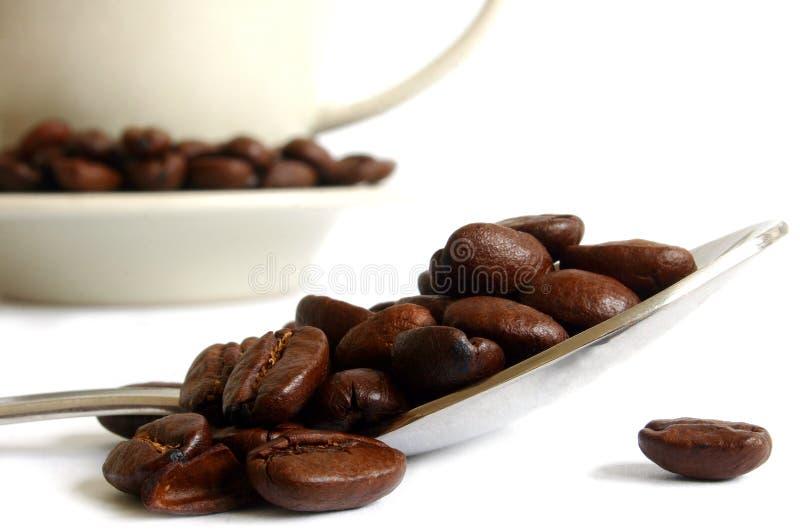 Coffee Life Stock Photo