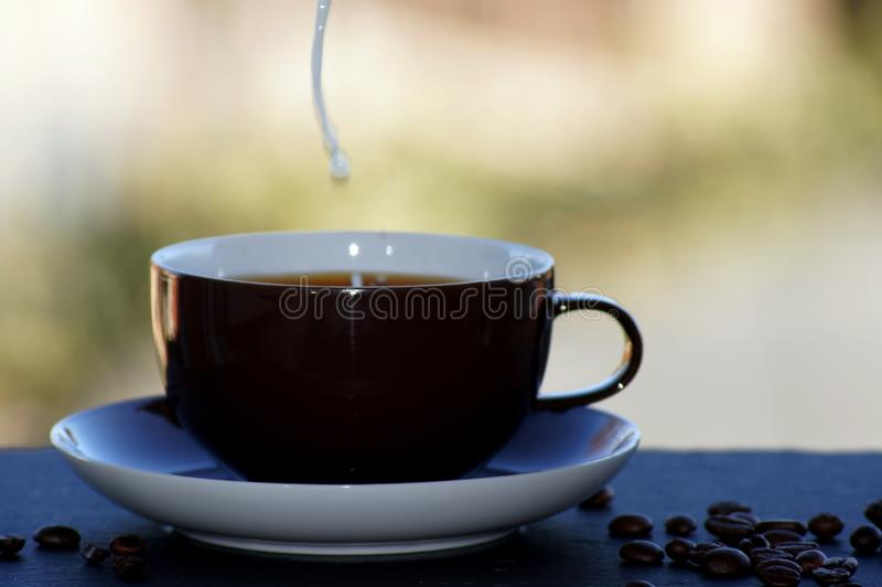 Coffee with milk freed on neutral background. Close UP royalty free stock photo