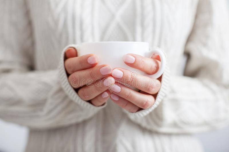 Coffee mug in female hands. stock photo