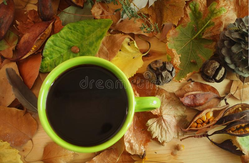 Coffee& x27;n autumn series 01 royalty free stock photos