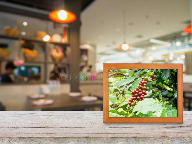 Coffee plantation in photo frame on wood counter stock image