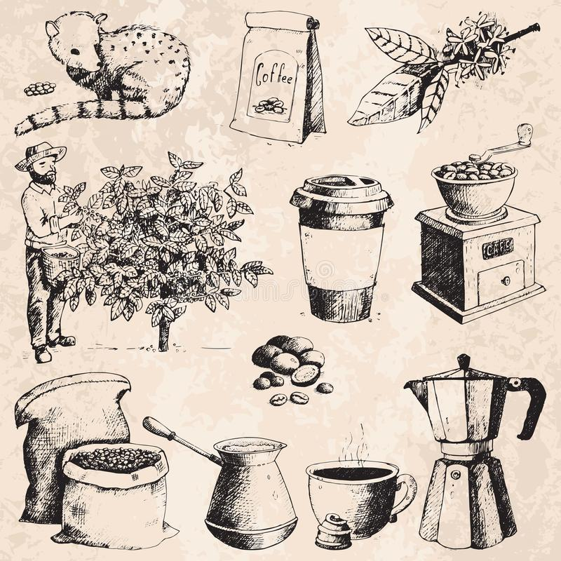 Coffee production hand drawn farmer picking beans on tree and vintage drawing drink retro cafe collection sketch dessert stock illustration