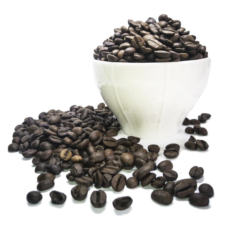 The coffee seed royalty free stock images