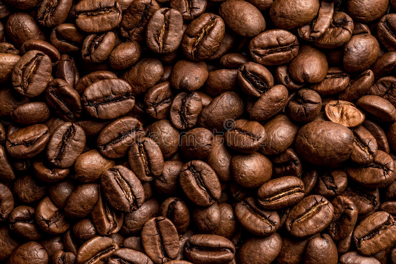Coffee seeds stock images