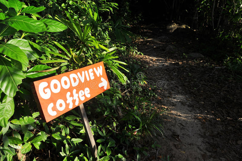 Coffee shop sign. `GOODVIEW coffee stock photo