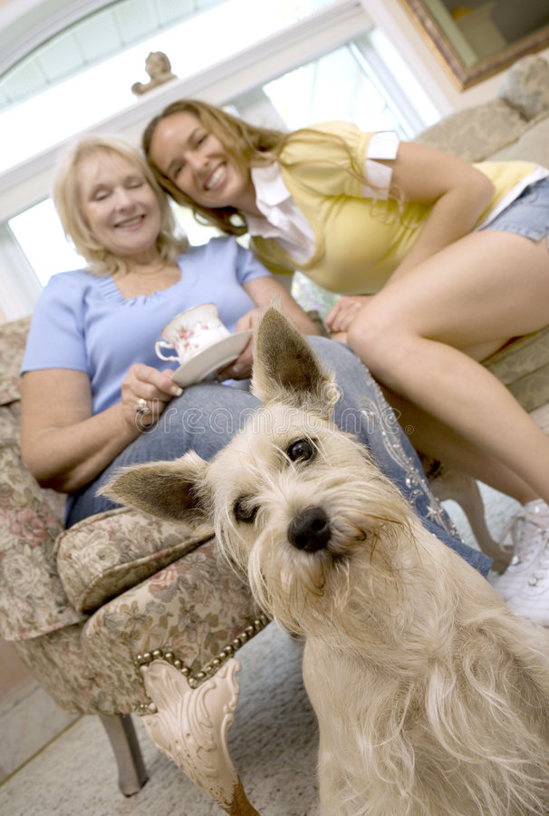 Coffee time. Mother and daughter enjoying coffee with their dog stock image