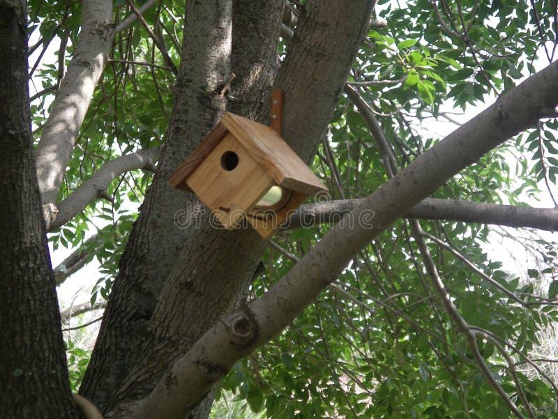 Coffee tin bird house royalty free stock photos