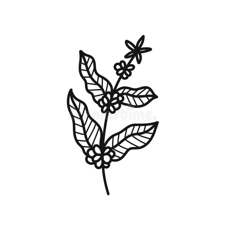 Free Coffee Tree Doodle Icon, Vector Illustration Royalty Free Stock Image - 184530366