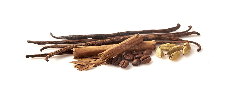 Coffee, vanilla, cinnamon, cardamom on white background stock images