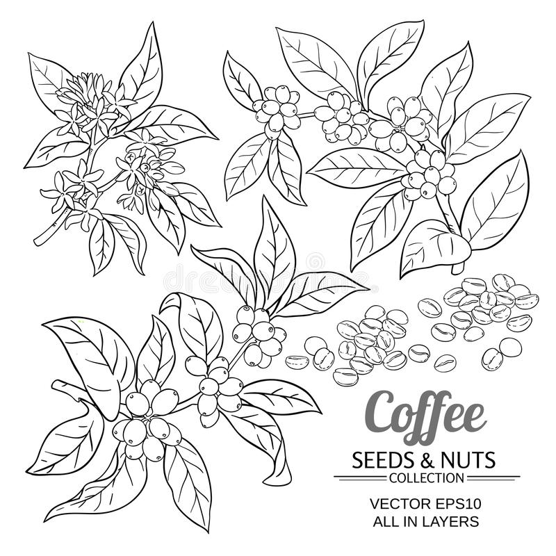 Coffee vector set royalty free illustration