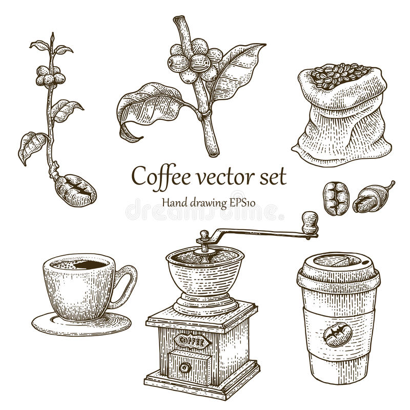 Coffee vector set hand drawing vintage style. Isolated on white background royalty free illustration