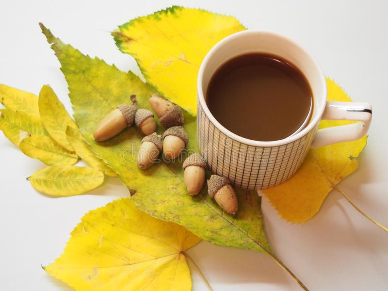 Coffee and yellow leaves stock photos