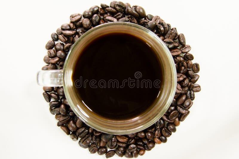 Coffeebean白色杯子 免版税库存图片