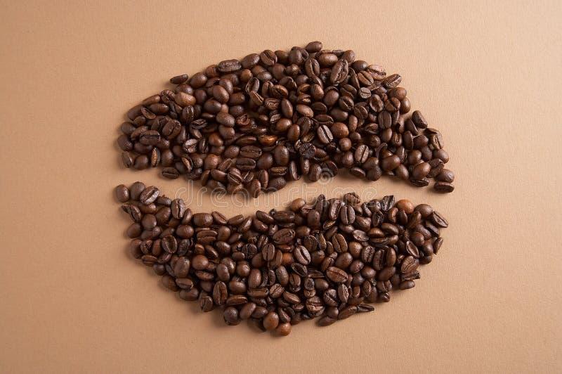 Coffeebean - Kaffebohne photos libres de droits