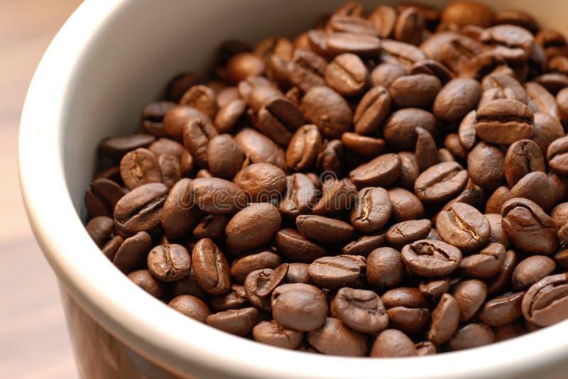 Coffeebeans in ciotola fotografie stock libere da diritti
