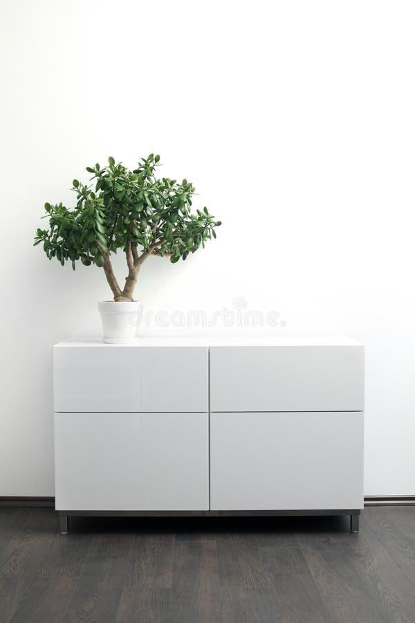 Coffre des tiroirs blanc avec le pot de fleur dans l'intérieur lumineux photos stock
