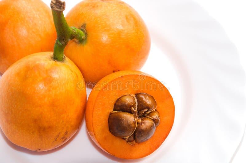 Cognassier du Japon d'eriobotrya de fruits de Loquats du plat blanc photographie stock libre de droits