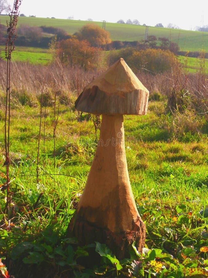 Cogumelo de madeira gigante contra o campo britânico foto de stock royalty free