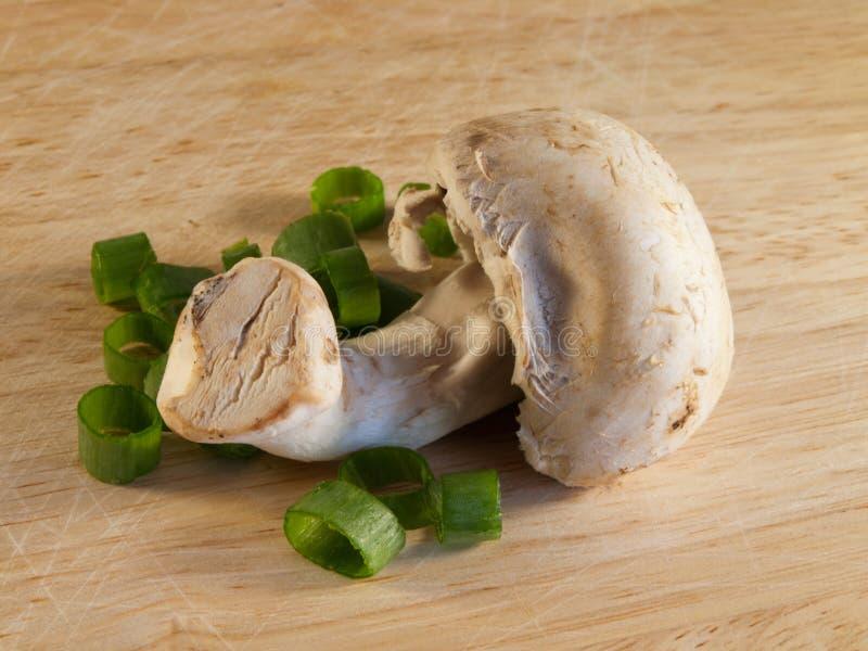 Cogumelo na placa de madeira com cebola verde imagem de stock