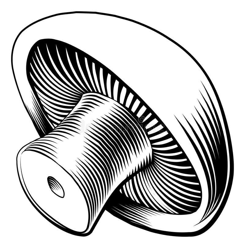 Cogumelo retro do bloco xilográfico do vintage ilustração royalty free