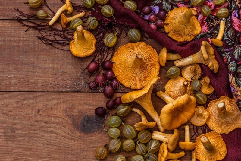 Cogumelos alaranjados da prima, groselhas amarelas e vermelhas e lenço modelado na tabela de madeira marrom fotos de stock royalty free