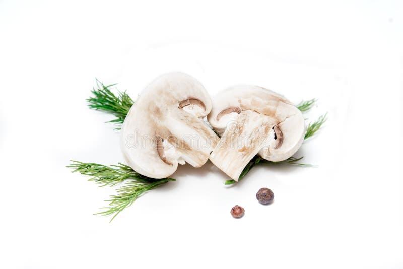 Cogumelos, close-up, isolado no fundo branco Vista superior imagem de stock