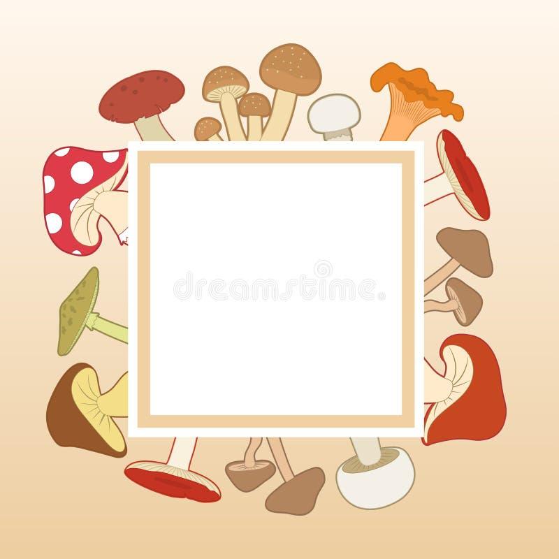 Cogumelos coloridos em torno de um quadro branco, ilustração do vetor ilustração do vetor