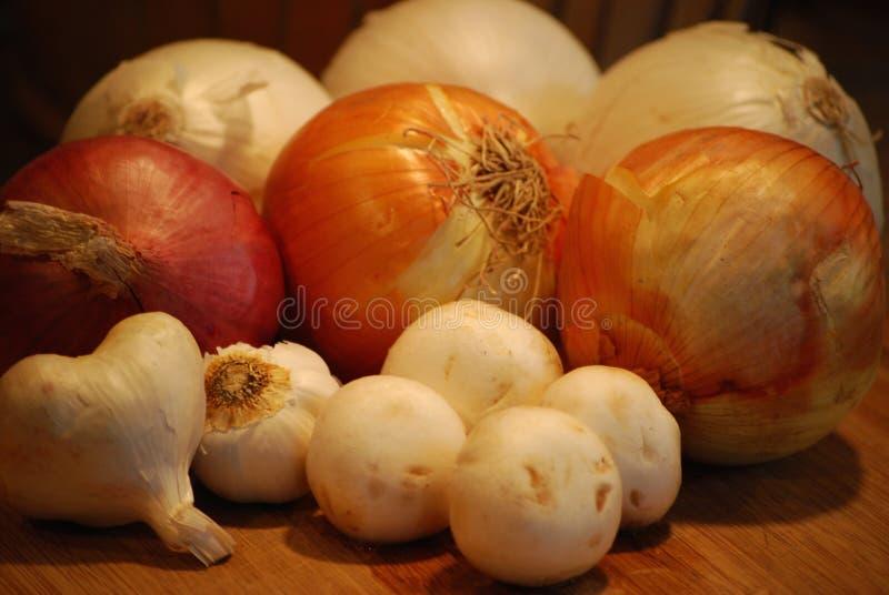 Cogumelos com alho das cebolas imagem de stock
