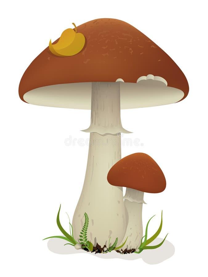 Cogumelos com folha e grama ilustração stock