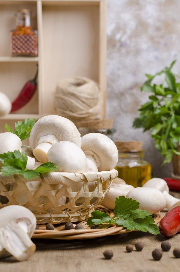 Cogumelos crus brancos imagem de stock