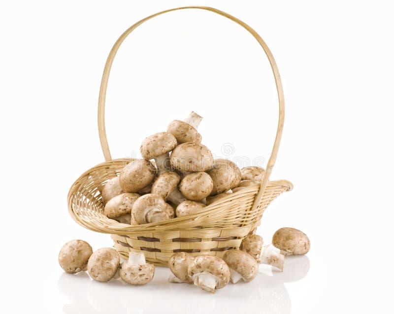 Cogumelos crus em uma cesta no branco fotos de stock