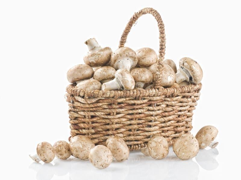 Cogumelos crus em uma cesta no branco imagens de stock