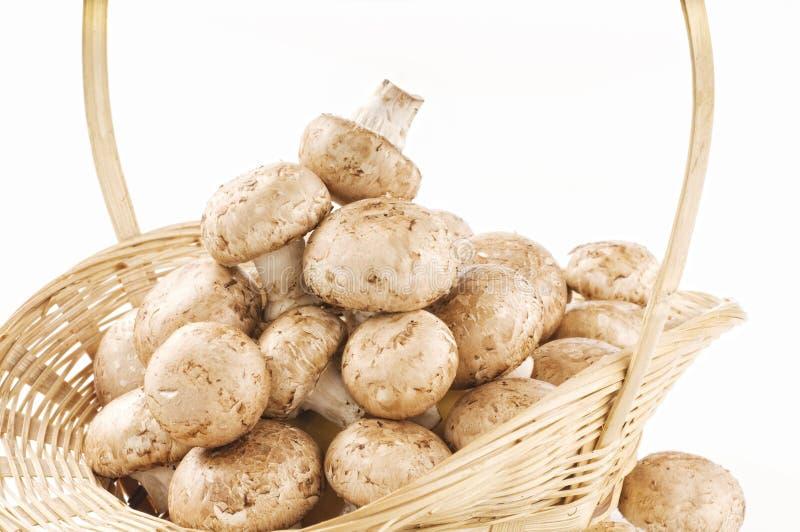 Cogumelos crus em uma cesta no branco fotos de stock royalty free