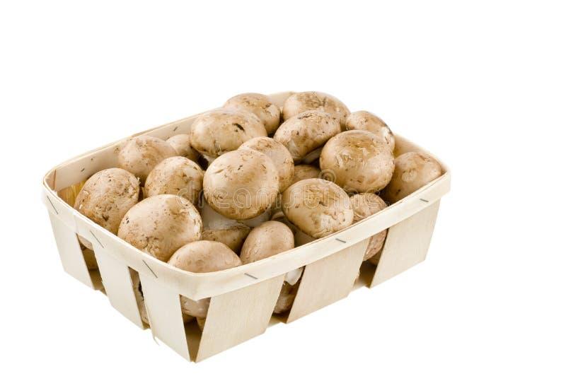 Cogumelos crus isolados em uma cesta no branco fotografia de stock royalty free
