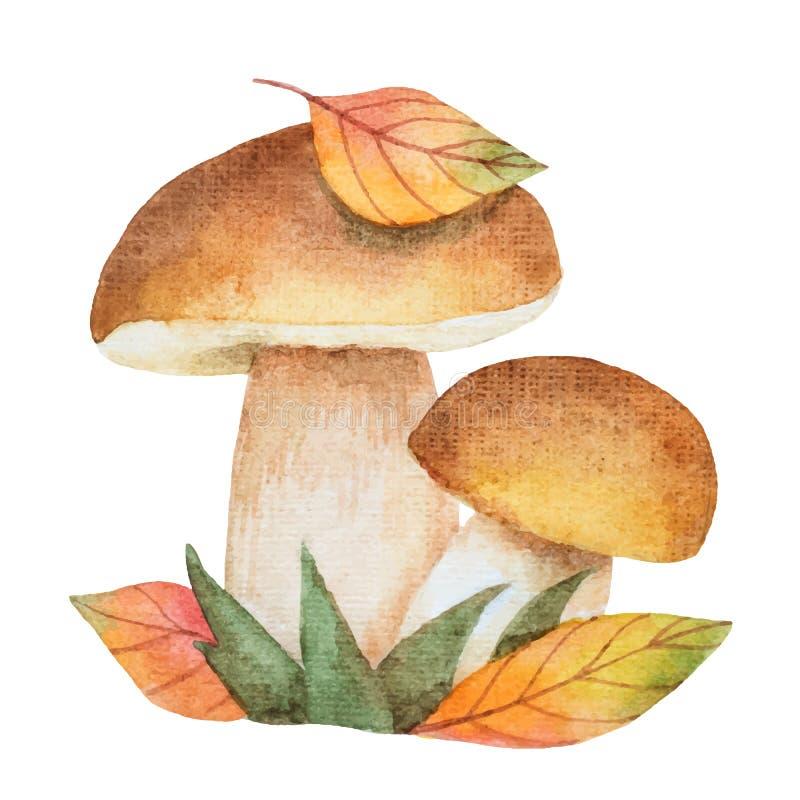 Cogumelos da aquarela com folhas de outono ilustração stock