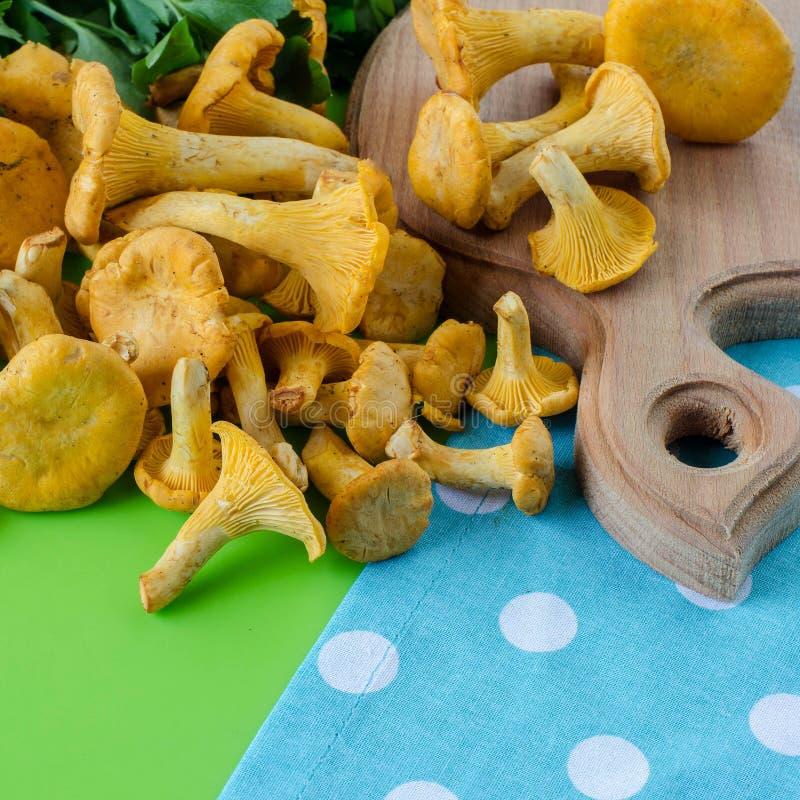 Cogumelos da prima na tabela foto de stock
