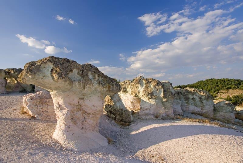 Cogumelos de pedra fotografia de stock royalty free