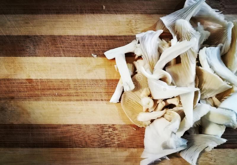 Cogumelos desbastados imagens de stock