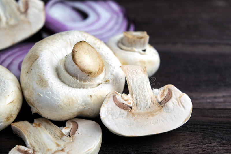 Cogumelos do cogumelo foto de stock royalty free