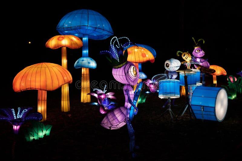 Cogumelos e Banda de Insetos no Festival de Luz Chinês imagem de stock