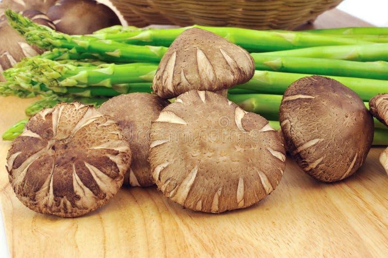 Cogumelos e espargos imagem de stock